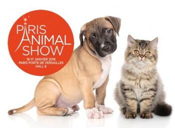 Découvrez le service Petlink au salon Paris Animal show