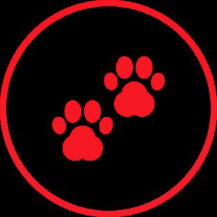 Carnivores : icone-carnivore